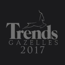 trends Lapino Albino