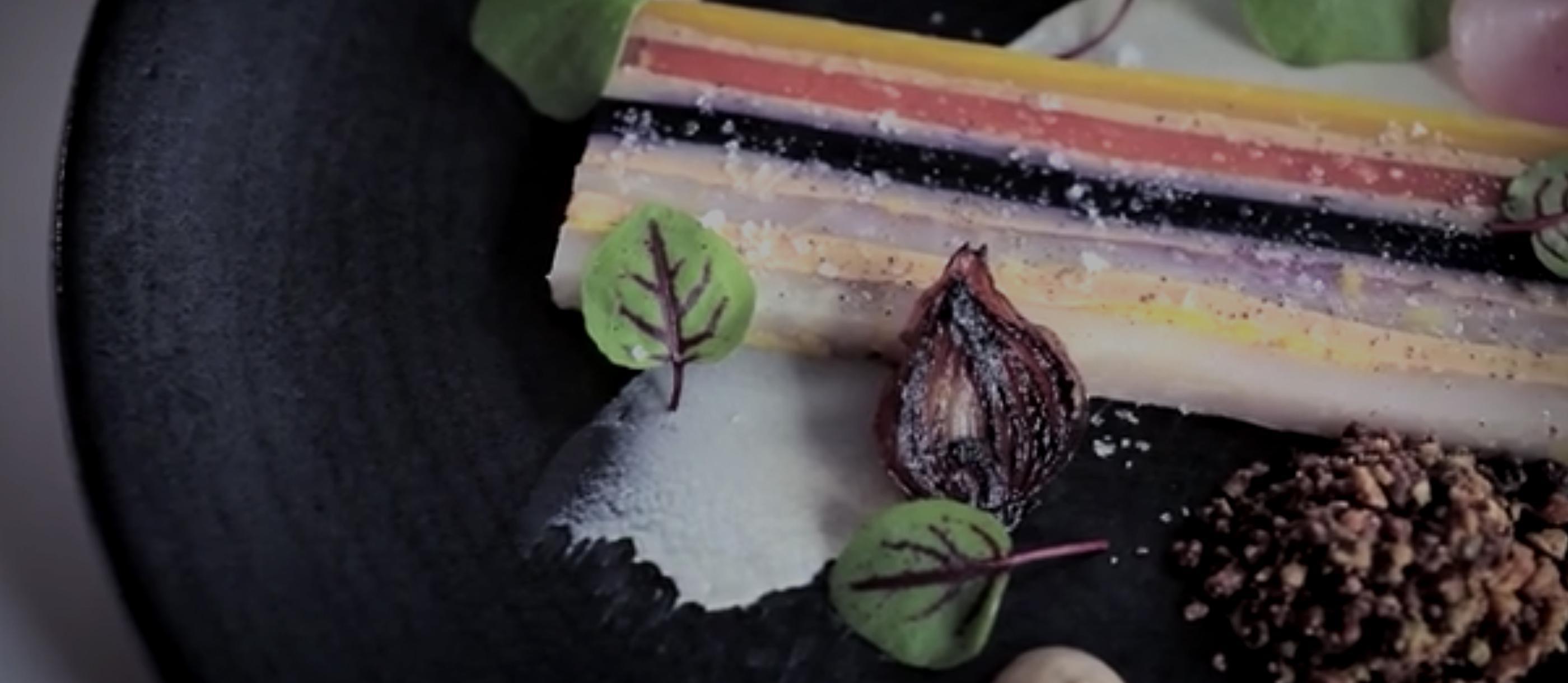 banner-blog-restaurant-video